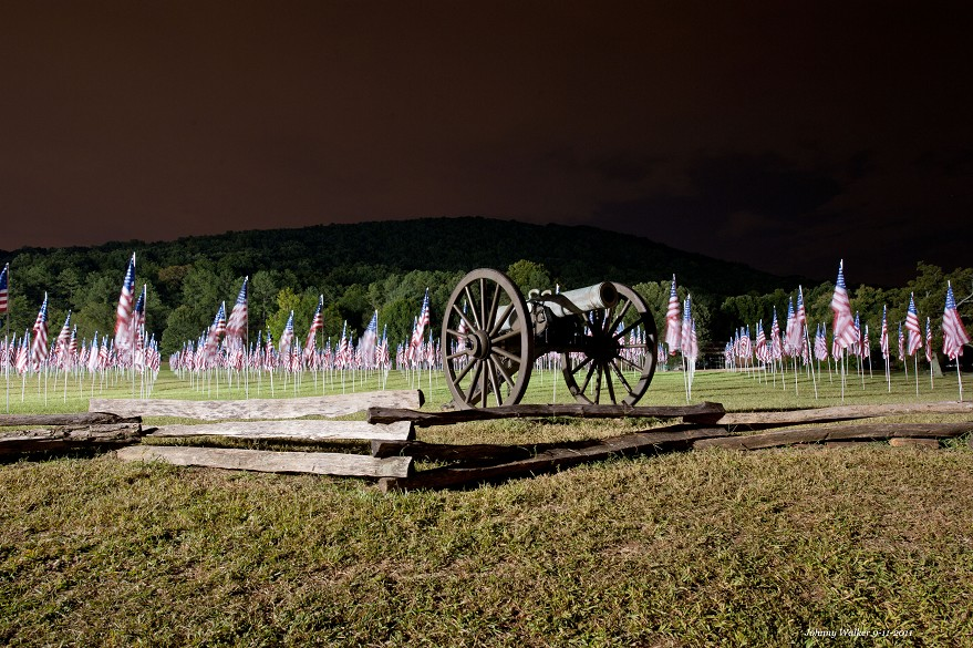 Cannon With Flags wide view